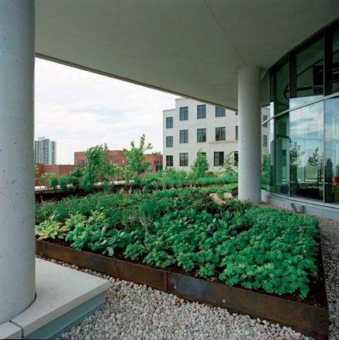 Tetto verde e terrazza giardino windi drian h 5 - Impermeabilizzazione terrazze pavimentate ...