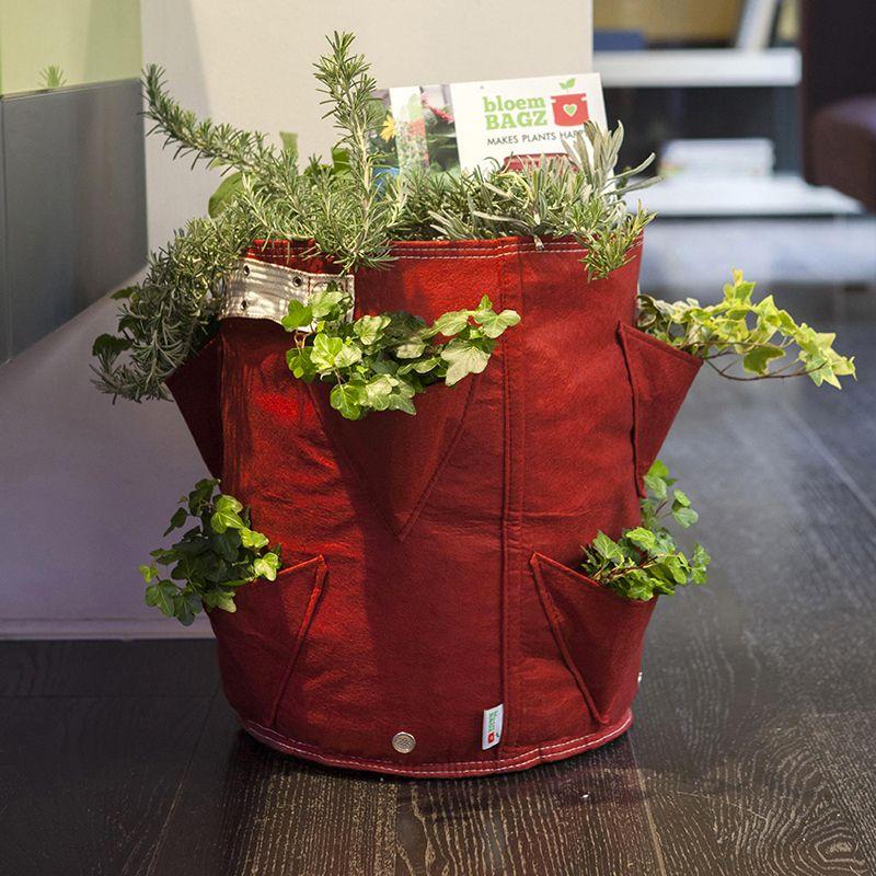 Vaso in tessuto per coltivare fragole bloembagz for Vasi per fragole